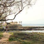 Worken und Wandern Mallorca 1